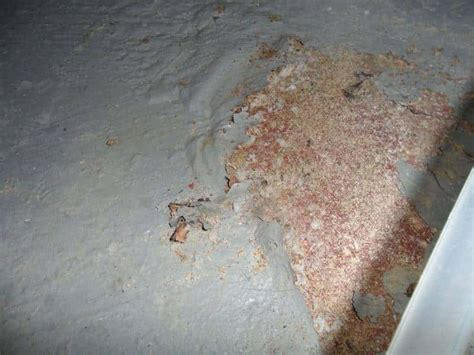 efforescnencegarrett basement waterproofing inc