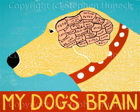 how big is a dogs brain mountain home of stephen huneck gallery