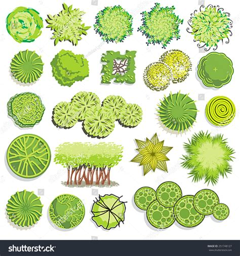 garden layout vector landscape shrub symbols 875685