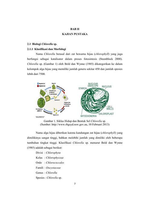 bab ii kajian pustaka  biologi chlorella sp  klasifikasi
