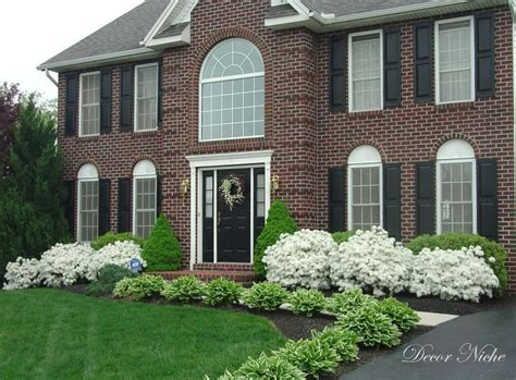 best shrubs to plant around house 17 images about curb appeal on pinterest concrete walkway weed seeds and shrubs