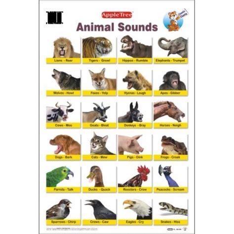 animal sounds apple tree animal sounds chart