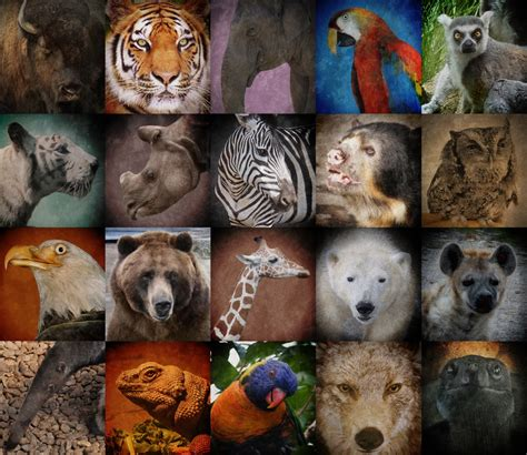 extinct breeds endangered species day may 20th lyon usa