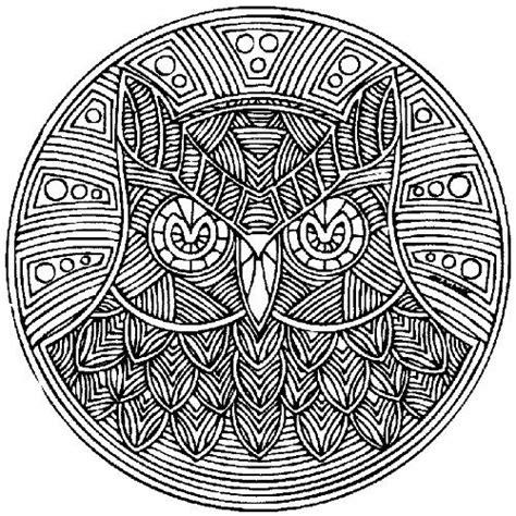 printable owl mandala owl mandala zentangle mandalas pinterest mandalas