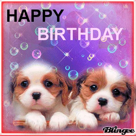 imagenes de happy birthday con perros happy birthday cubanita gladys picture 126579977
