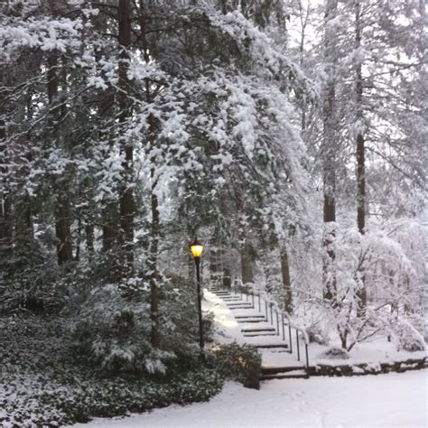 nc history of snowy christmas snowy hendersonville nc favorite places spaces carolina