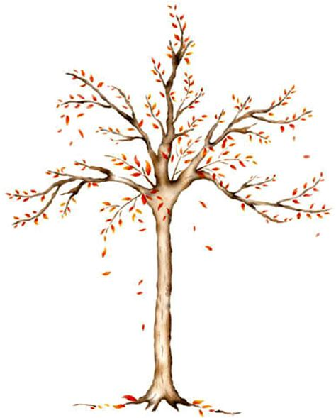 tree template for wall wall mural stencils accent stencils tree stencilease
