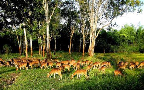 Colours of Life...: The Wildlife Sanctuaries In India