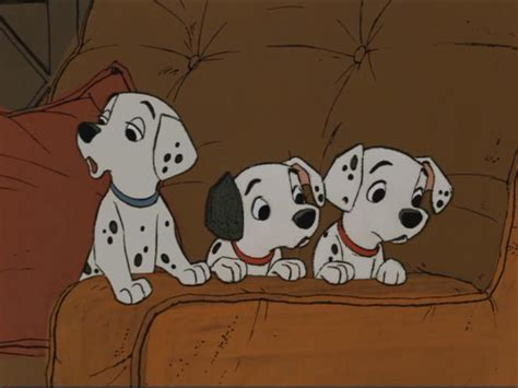 how many dalmatian puppies are in pongo and perdita s litter daik hd25 children s review 101 dalmatians