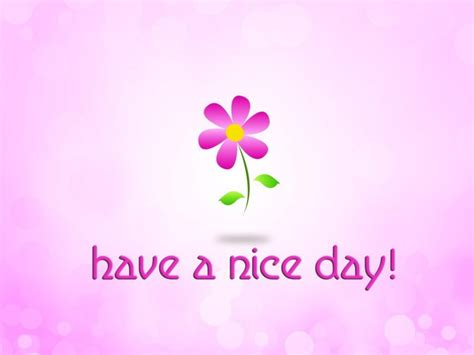 A Day With Pink by Small Flower On A Pink Background A Day Hd