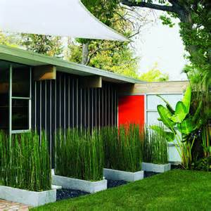 Eichler Homes open to the outdoors sunset