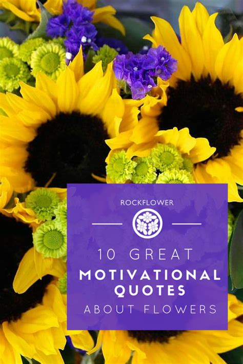 great motivational quotes  flowers rockflower