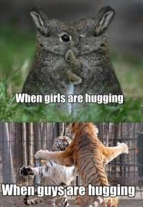 Meme Animals - hugging on funnyand com
