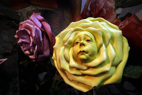 imagenes flores maravillas a inspira 199 195 o do momento alice no pa 205 s das maravilhas