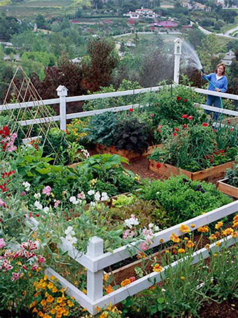 small vegetable garden design ideas small vegetable garden design home design ideas