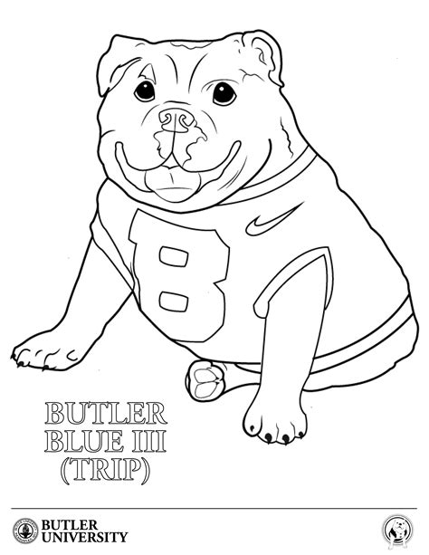 baby bulldogs coloring pages baby english bulldog coloring sheet coloring pages