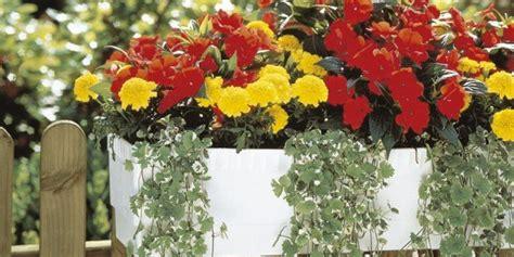 irrigazione terrazzo impianto di irrigazione per i vasi in balcone cose di casa
