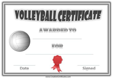 free volleyball certificate templates customize online