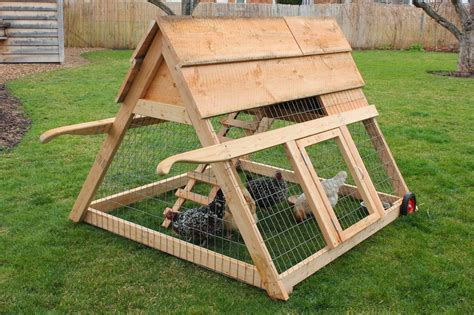 backyard chicken tractor chicken tractor www imgkid com the image kid has it