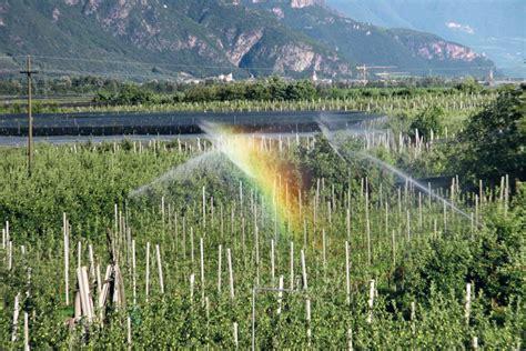 irrigazione giardino calcolo meleto come misurare la quantit 224 di acqua apportata con l