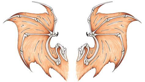 bat wings tattoo design weasyl
