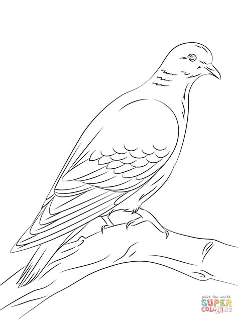 Doves Coloring Pages stock dove coloring page free printable coloring pages