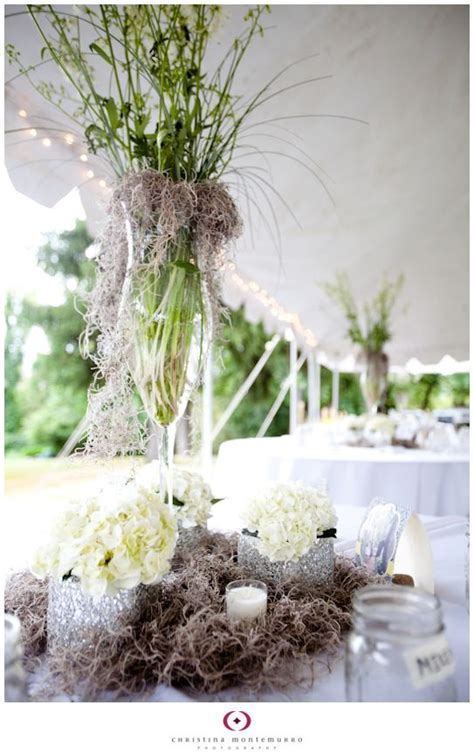spanish moss used in floral arrangement or for the center