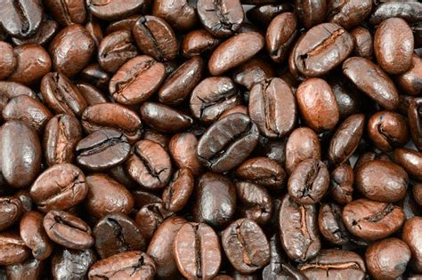 treatise on the effects of coffee classic reprint books the link between food diet and mental health scitech