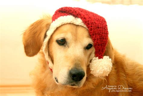 santa hat for dogs dog santa hat holiday dog hat christmas