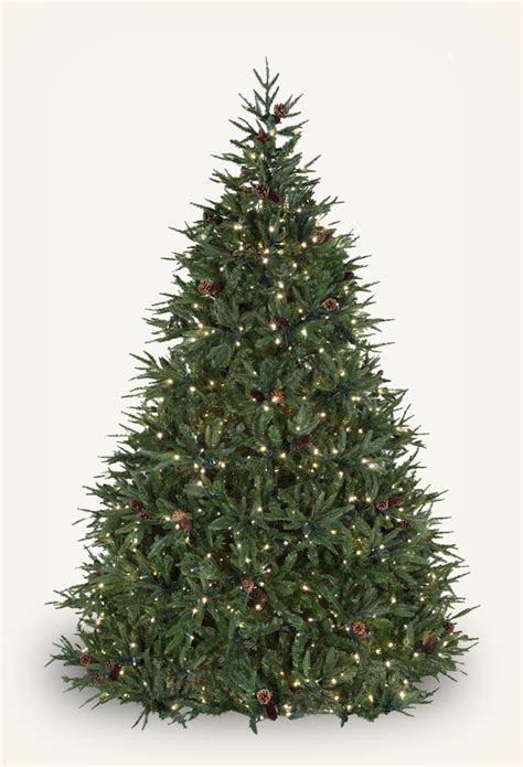 28 best christmas trees etc dunhill fir prelit tree