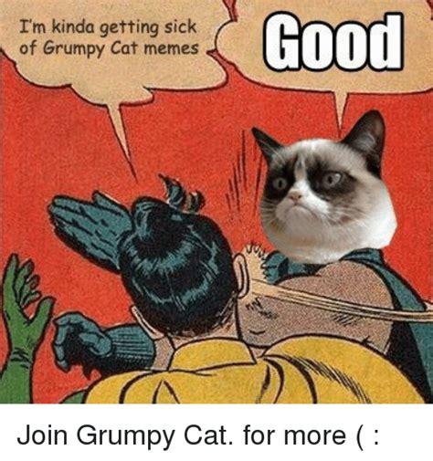 Sick Cat Meme - 25 best memes about grumpy cat memes grumpy cat memes