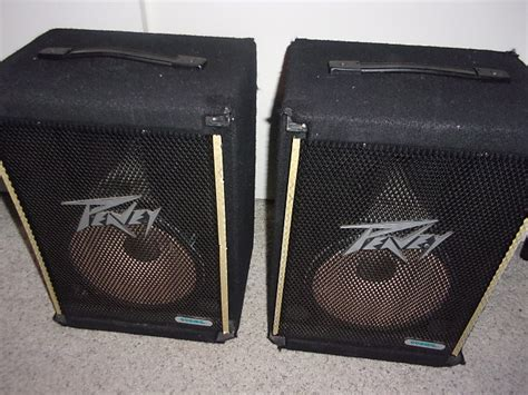 Speaker Passive Peavey Bw15 Made In Usa vintage peavey pa speaker pair lot 2 speakers per cabinet reverb