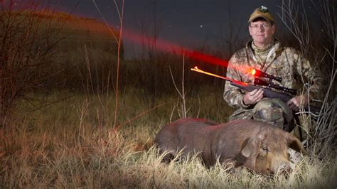 best predator hunting lights red or green light for coyote hunting iron blog