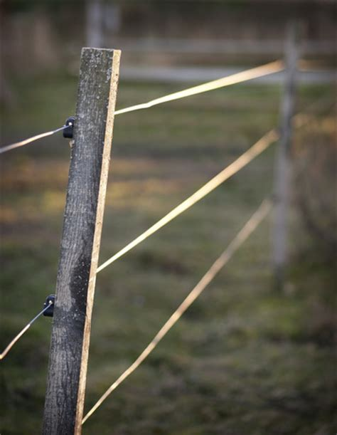 electric fence installation electric fence installation cattle fencing
