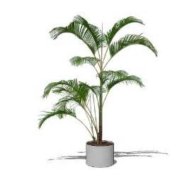 Hq plants are 2d billboards in a 3d pot in order