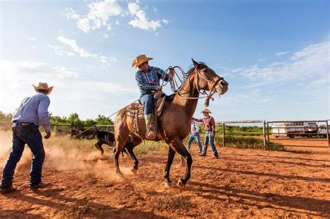 guardian cowboy cowboys of ranch books 1000 images about cowboys of the waggoner ranch on