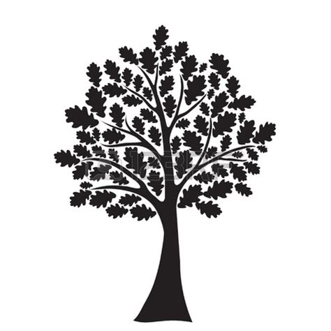 black and white tree images oak tree black white clipart
