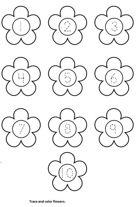 printable preschool flowers flower worksheet crafts and worksheets for preschool