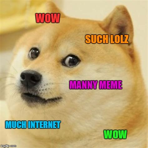 What Is Doge Meme - doge meme imgflip