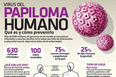 virus del papiloma humano vph fotos infografia virus del papiloma humano qu 233 es y c 243 mo