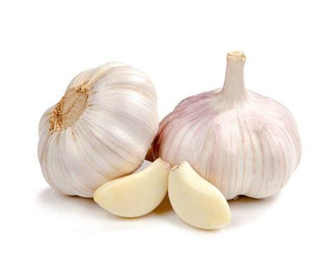 Suplemen Bawang Putih apakah bawang putih dan jahe dapat membantu pengobatan
