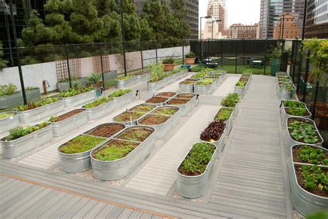 modern vegetable garden design farmscape raised beds contemporary landscape
