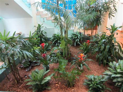 san francisco bay area interior plant service affordable