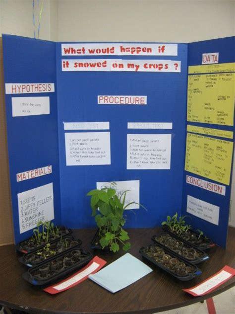 Plant Science Fair Projects School Plant Science Fair