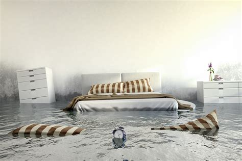 stop mould in bedroom how to get rid of mould on walls in bedroom home logic