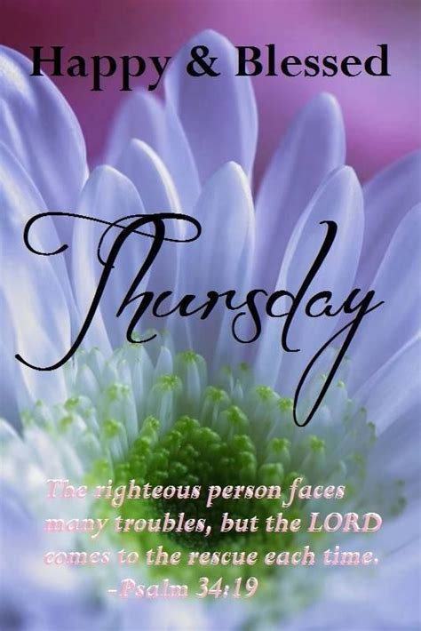 happy blessed thursday pictures photos and images for