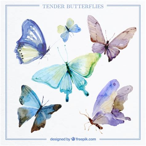 Decorative Butterflies by Collection Of Decorative Butterflies Watercolor Vector Free