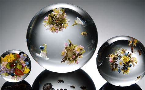 wallpaper flower glass transparent balloons flowers bees flower glass sphere mood