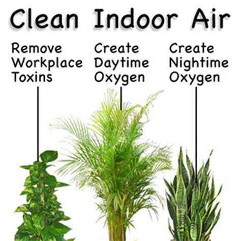 grow fresh air