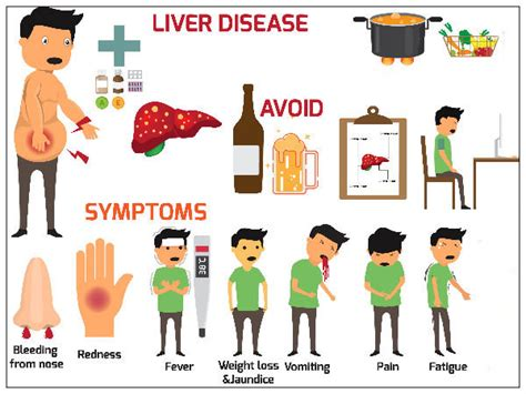 Your Liver Is Already Detoxed by What Causes In The Liver Awesummly